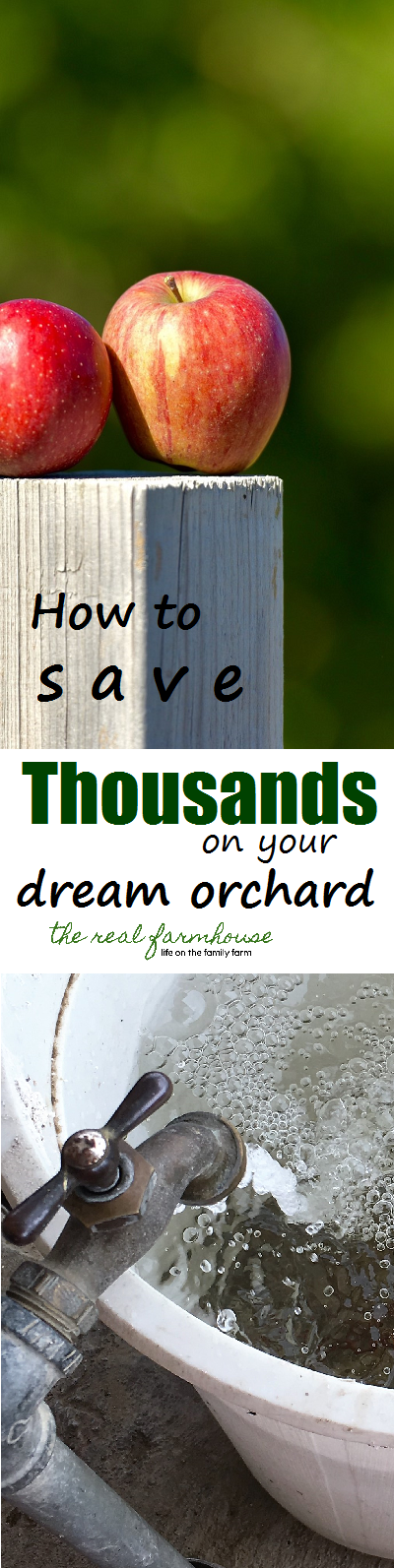 How to save thousands on your dream orchard. Don't wait! Planning ahead saves the big bucks.