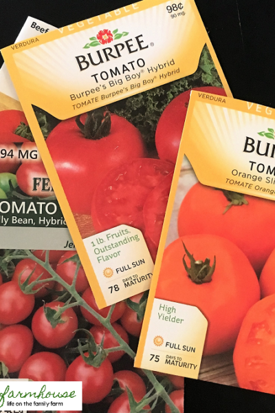 How to guarantee you'll have the first ripe tomatoes on the block