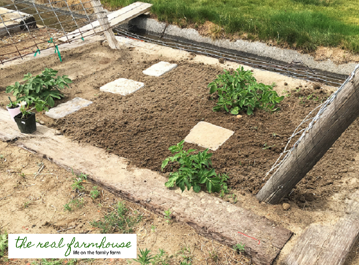How long does it REALLY take to maintain a large garden? This one is 3000 square feet.