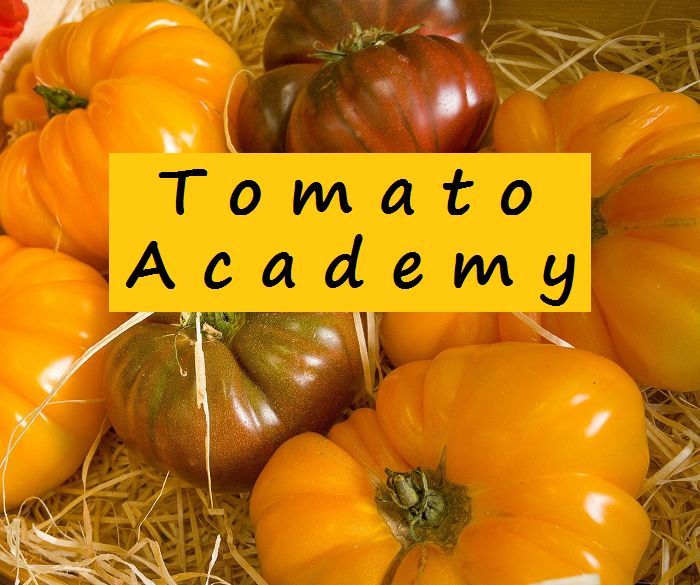 "The Tomato Freaks Guide to choosing, growing, and selling ""high end"" tomatoes"