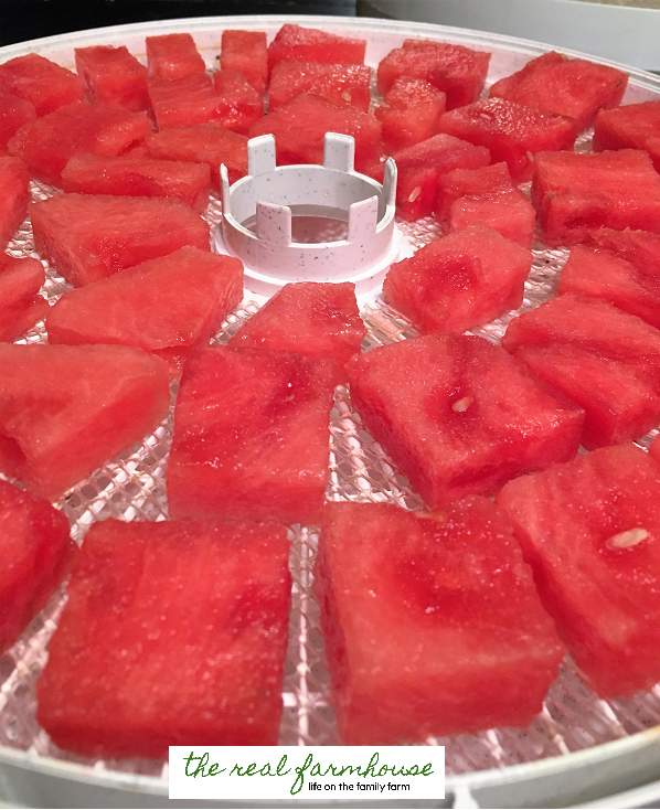 How to make watermelon chips