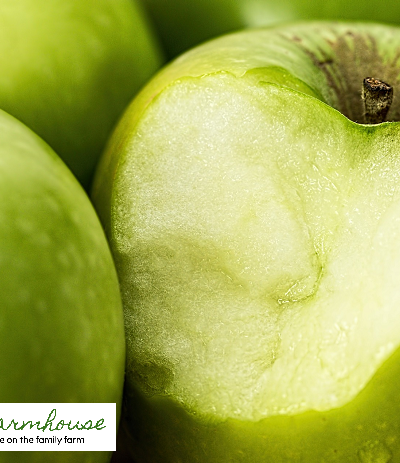 13 apple growing secrets from the professionals