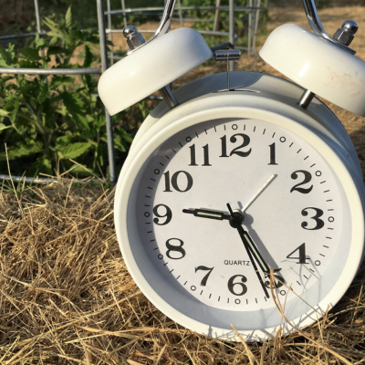50 ways to become more self-sufficient in 1 hour or less