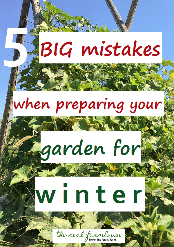 5 Big Mistakes When Preparing Your Garden For Winter