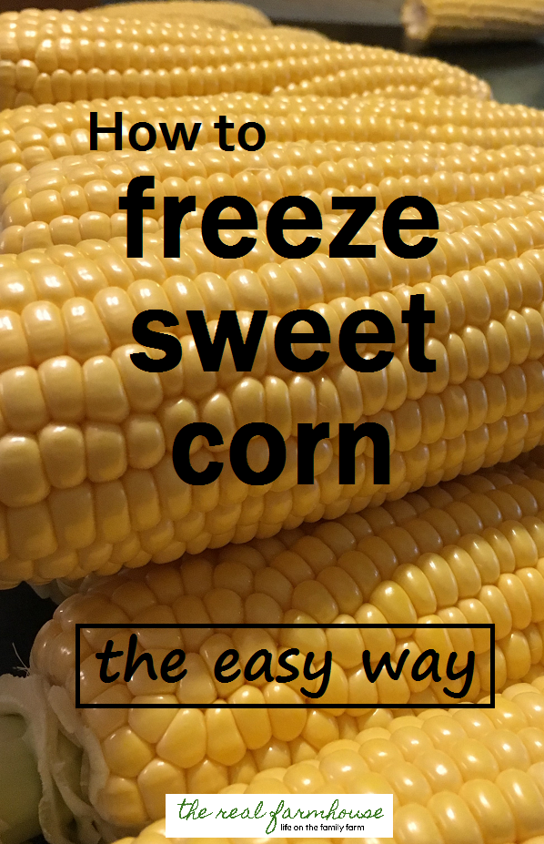 How to freeze sweet corn the easy way- fast, easy, and so much better than store bought frozen corn