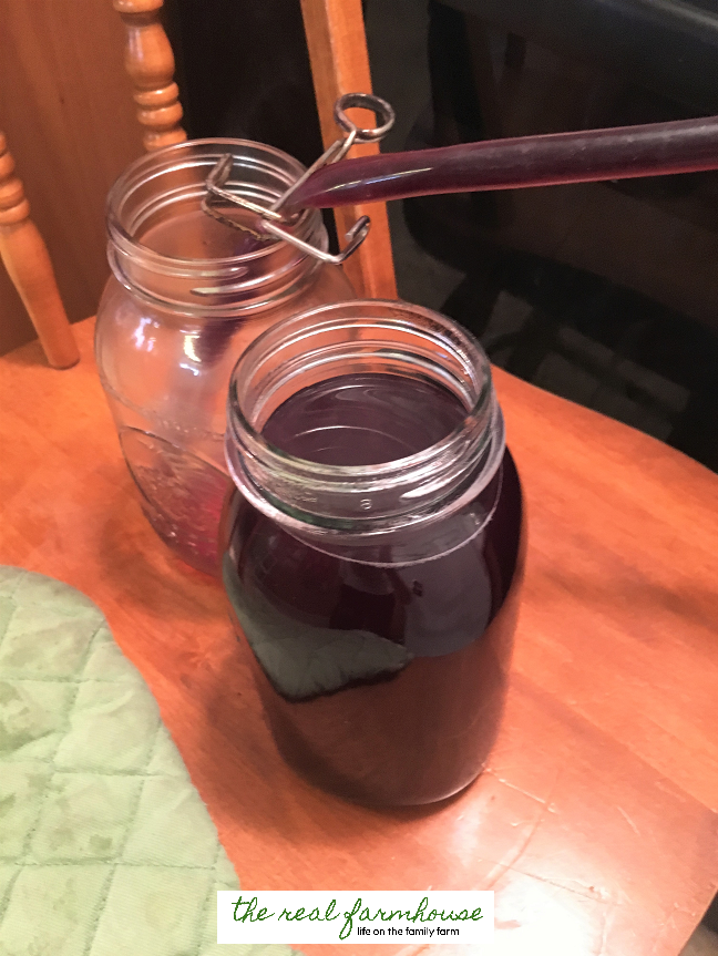 How to make your own organic grape juice.