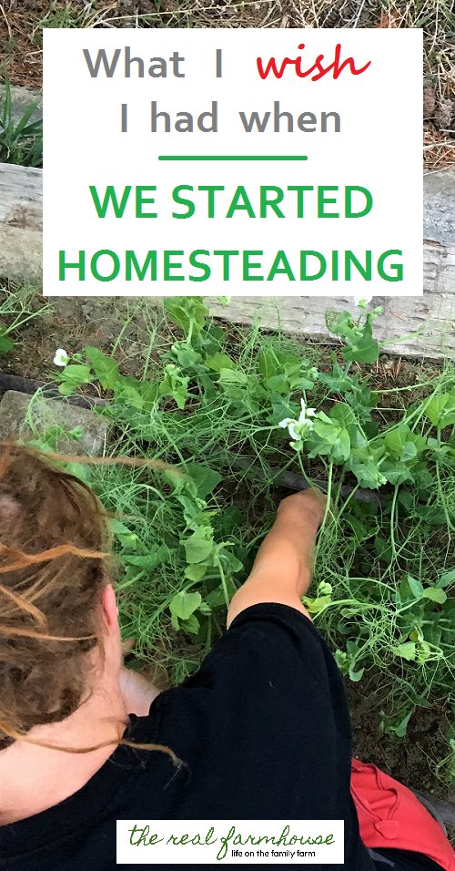 The 5 things every beginning homesteader needs. What I use all the time, what pays for itself in record time, and what I simply can't live without
