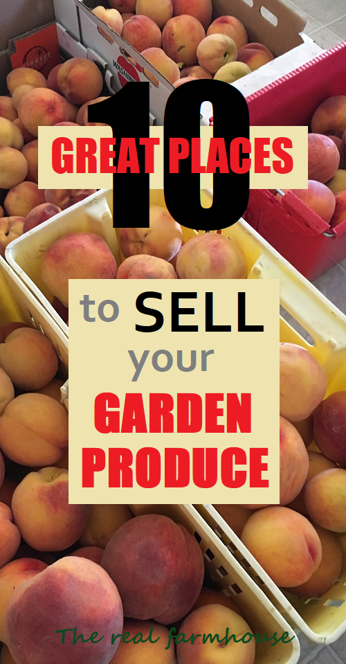10 great places to sell your garden produce. How to grow a garden for profit
