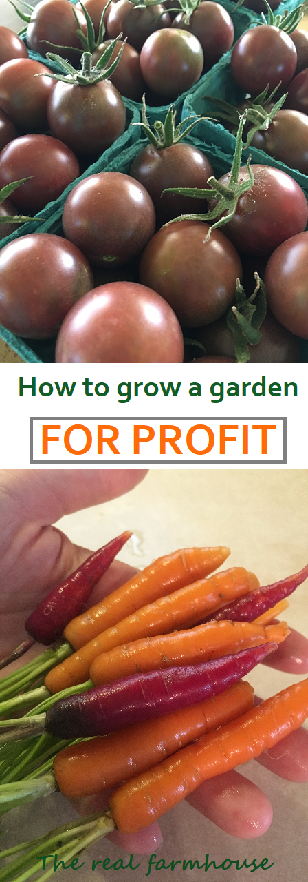 great easy simple information on how to grow a garden for profit. 3 simple steps to start making money with your produce