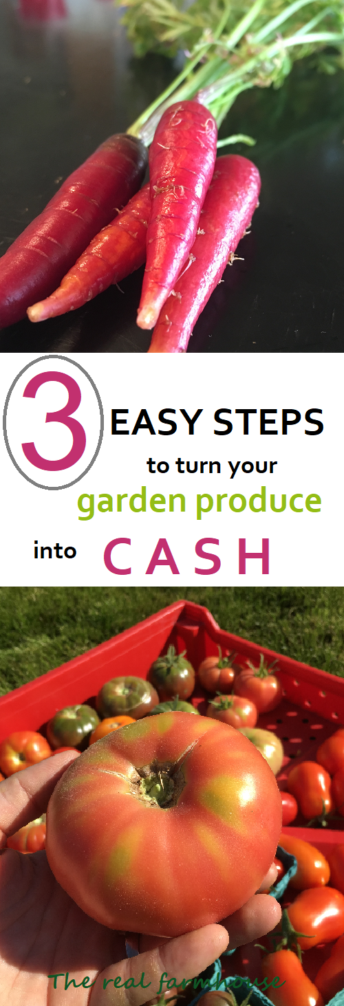 simple easy advice on how to start selling your garden produce. How to grow a garden for profit