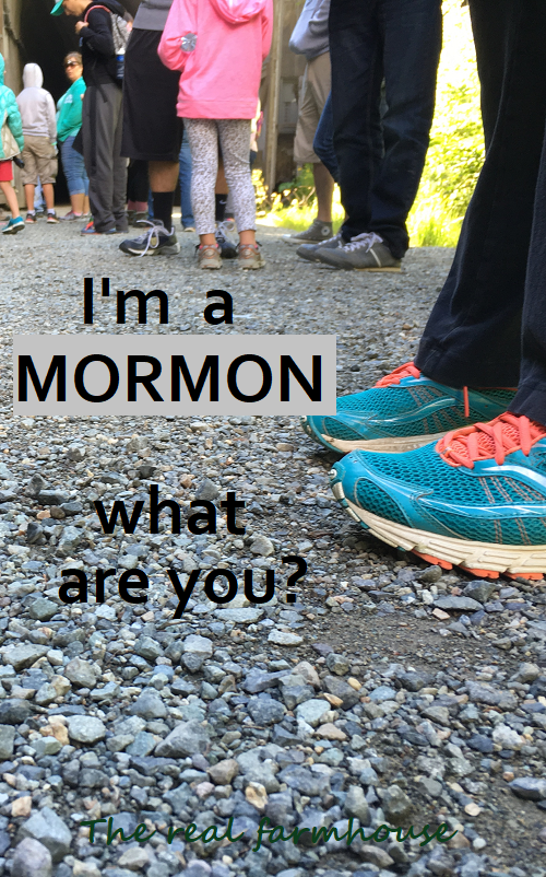 The Farmer's Wife- I'm a mormon, what are you?