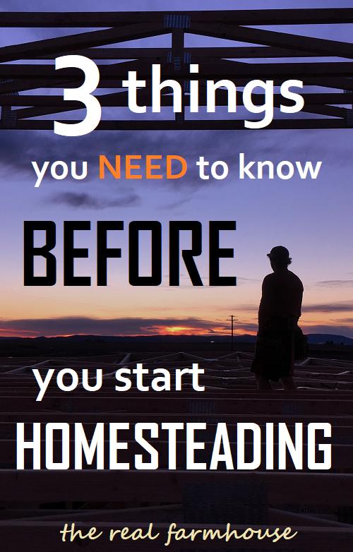 3 things you need to know before you start homesteading. good advice and tips for someone just starting out.